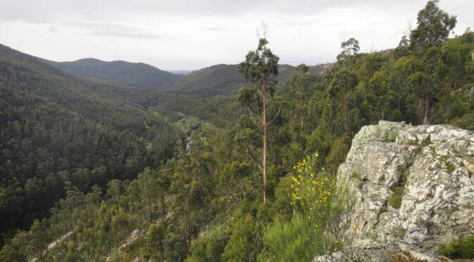 Centro de Trail de Valongo